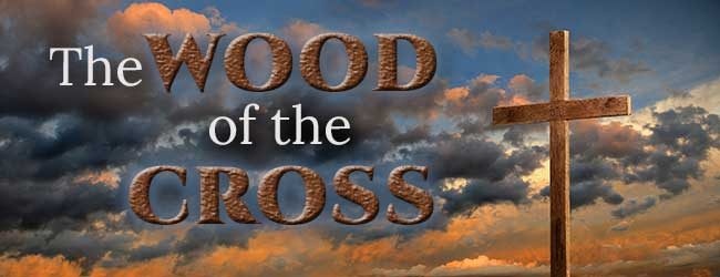 650x250-The-Wood-of-the-Cross.jpg