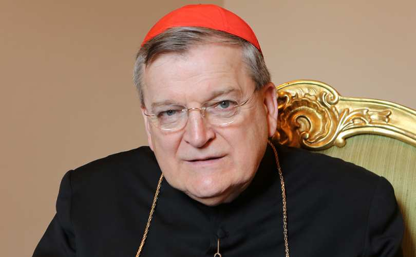 Cardinal_burke_3.jpg