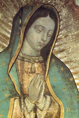 Guadalupe-300x450-2.jpg