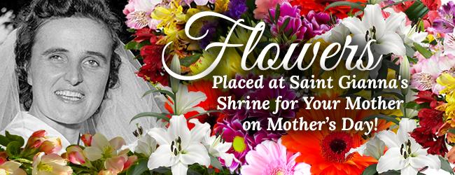 650x250-DON-ASK-Flowers-St-Gianna-Shrine.jpg