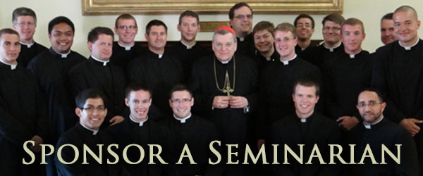 600x250-Sponsor-Seminarian.jpg