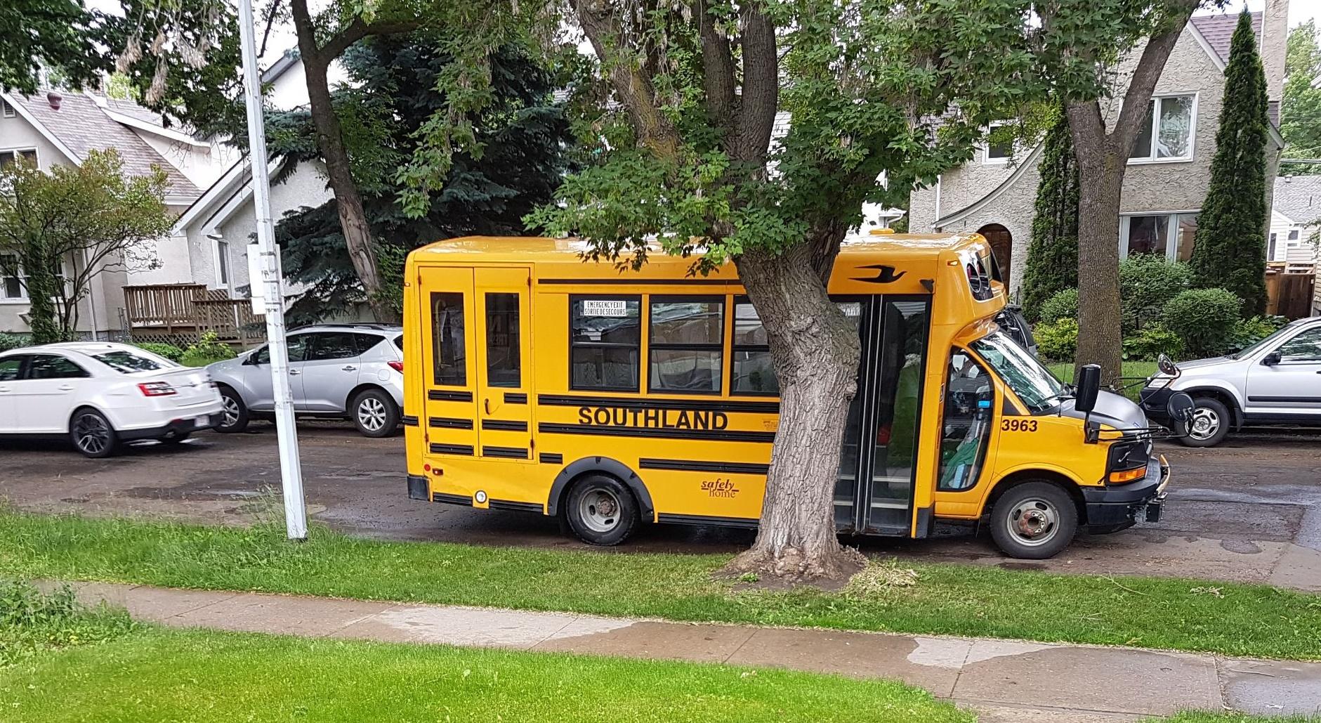 schoolbus2.jpg