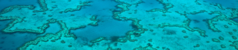 aerial shot of the Great Barrier Reef