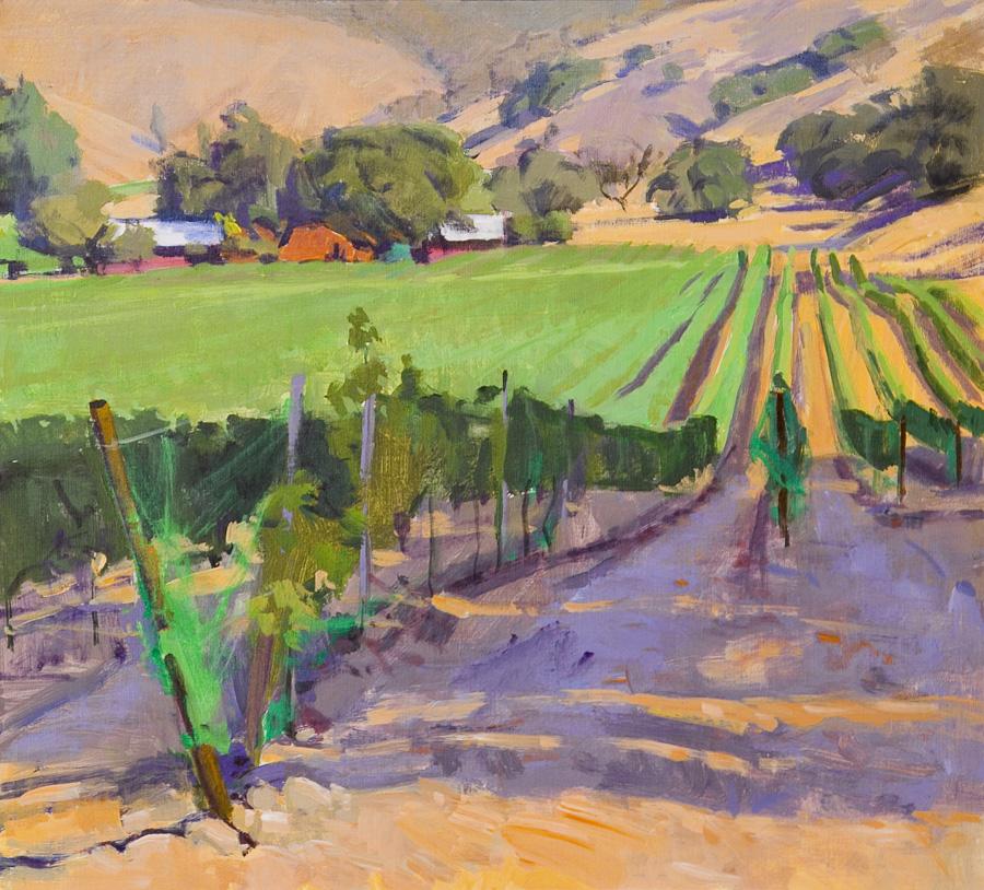 Alamo Creek Vineyard