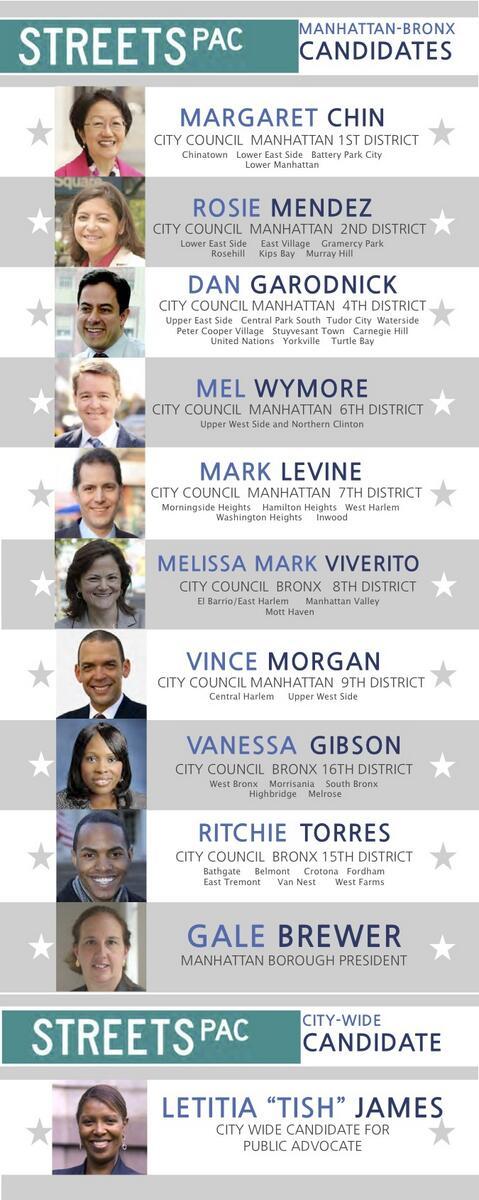 Manhattan-Bronx_Candidates.jpg