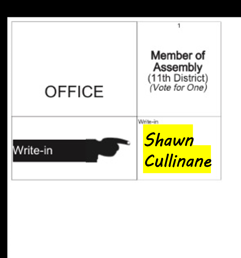 shawn_cullinane_write_in3.png