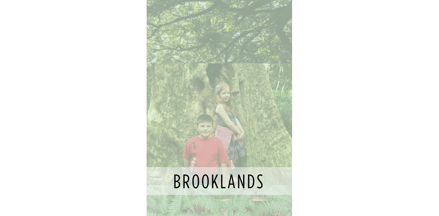 PHOTOPAGE-Brooklands_for_WEB.png