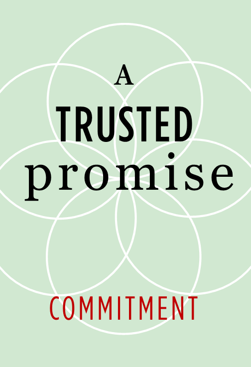 07WEBPromise.png