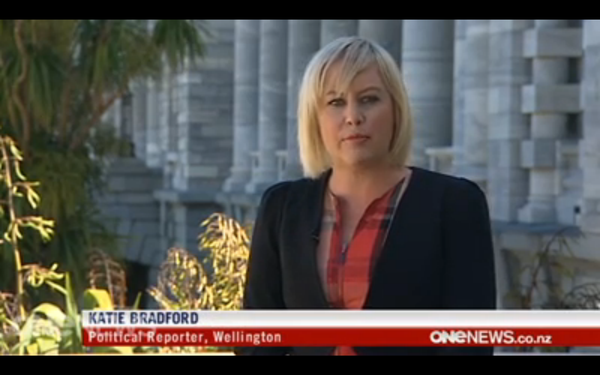 TVNZ screenshot