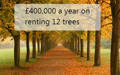 £400,000 a year on renting 12 trees