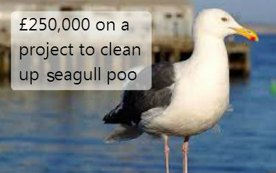 £250,000 on a project to clean up seagull poo