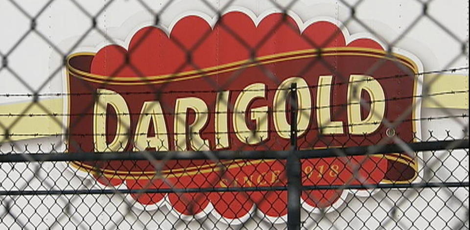 dg_banner.jpg