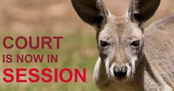 kangaroo-court-thumb.jpg