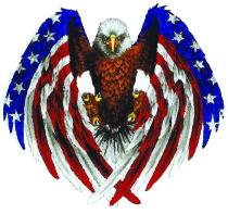eagle_solid_3_inch.jpg