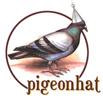 pigeonhat.jpg
