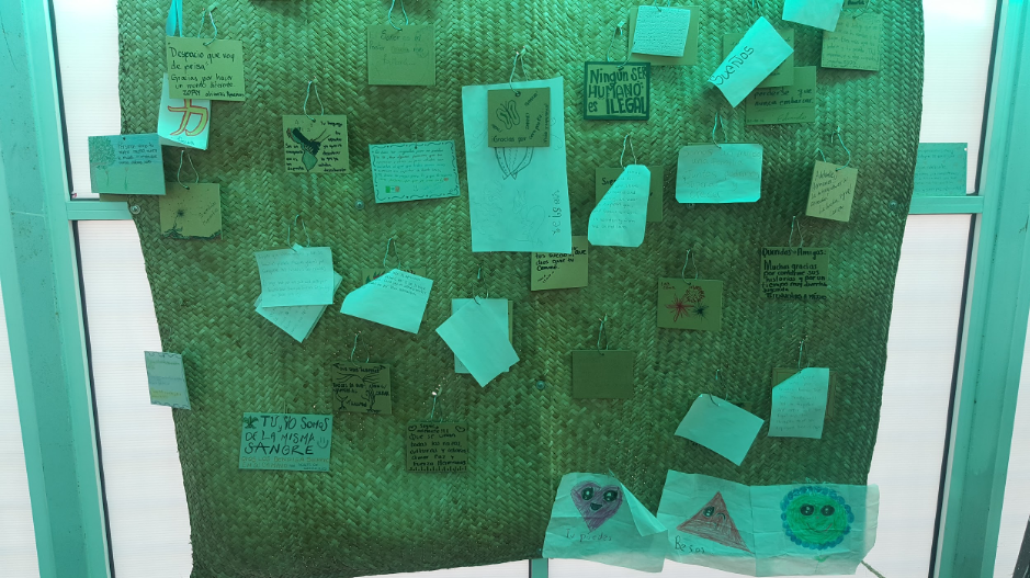 A sheet of fabric with notes and images pinned to it