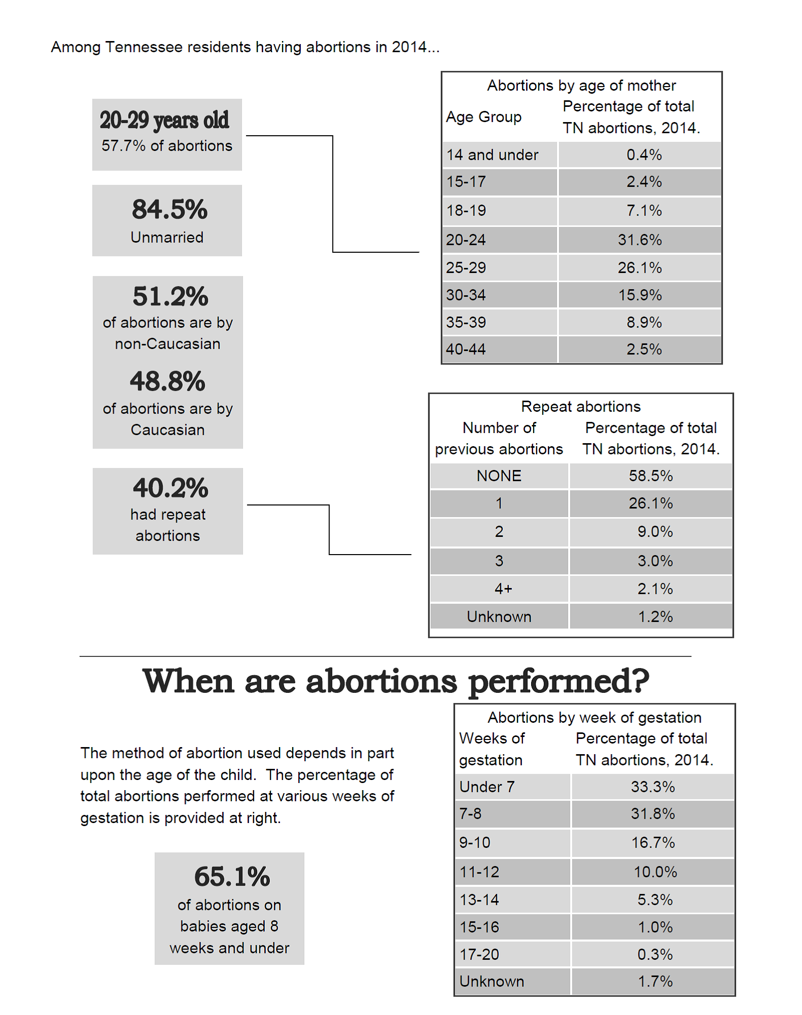 2014_Abortion_Numbers_p_2.png