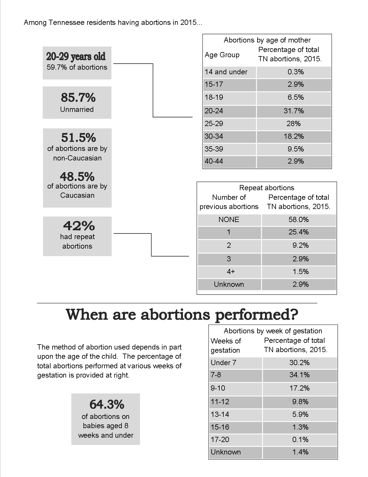 2015_Abortion_Numbers_p_2.png