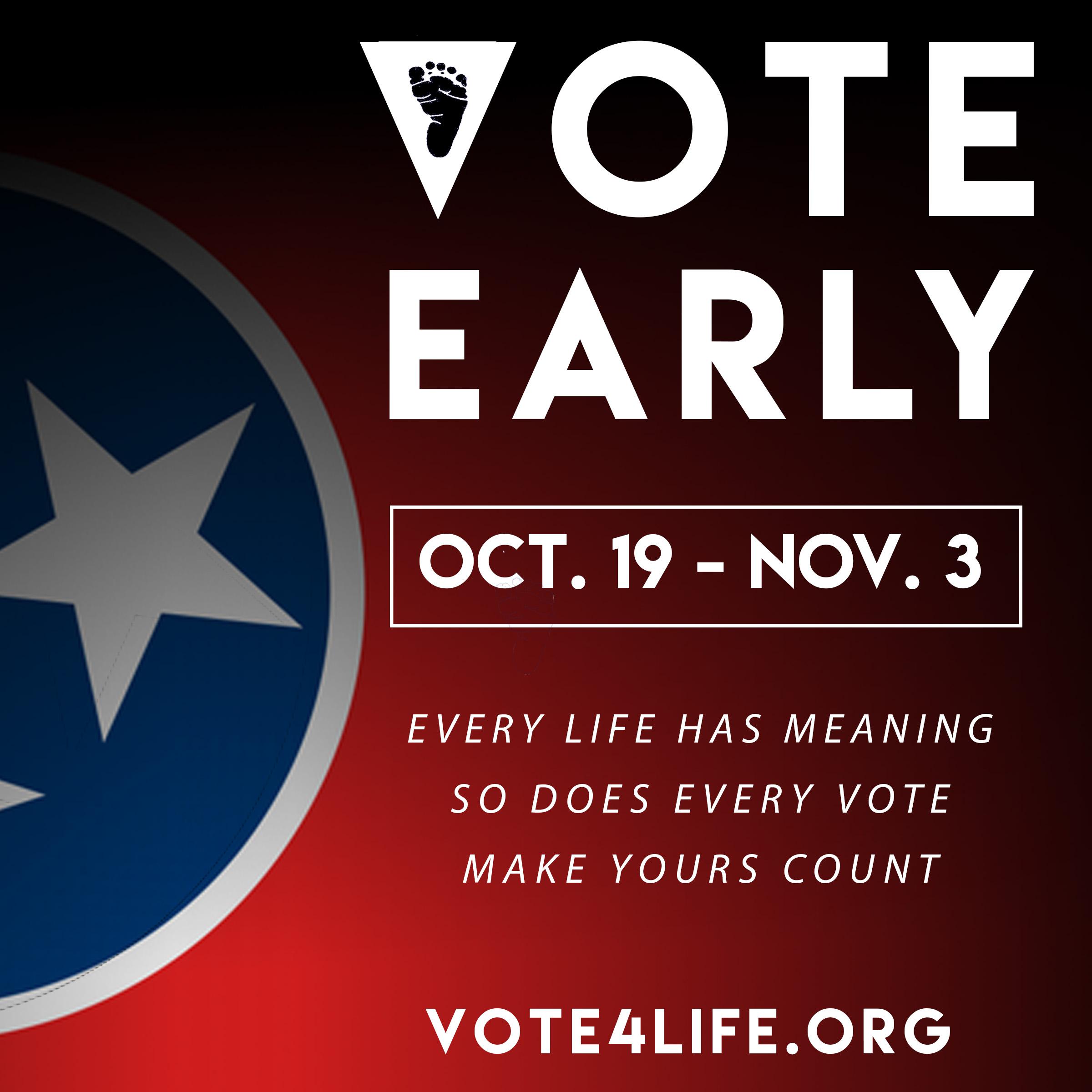 TRL_General_Early_VOTING_FLAGMEME.jpg