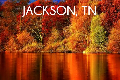 jackson_web_button.png