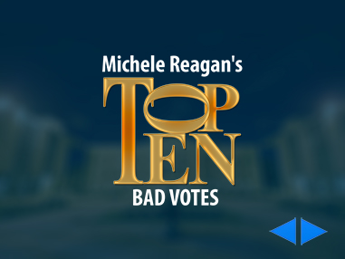 Michele Reagan's Top 10 Bad Votes