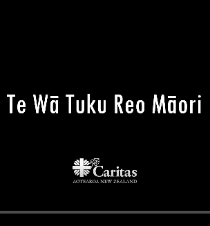Photo of Caritas Aotearoa New Zealand - Wellington