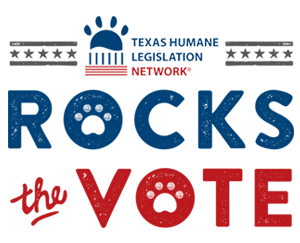 rocks-vote.png