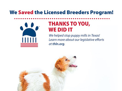 In A Victory For Animal Welfare, The Texas Sunset Commission Votes To Maintain The Licensed Breeders Program
