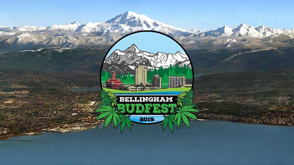 Image result for Bellingham budfest logo