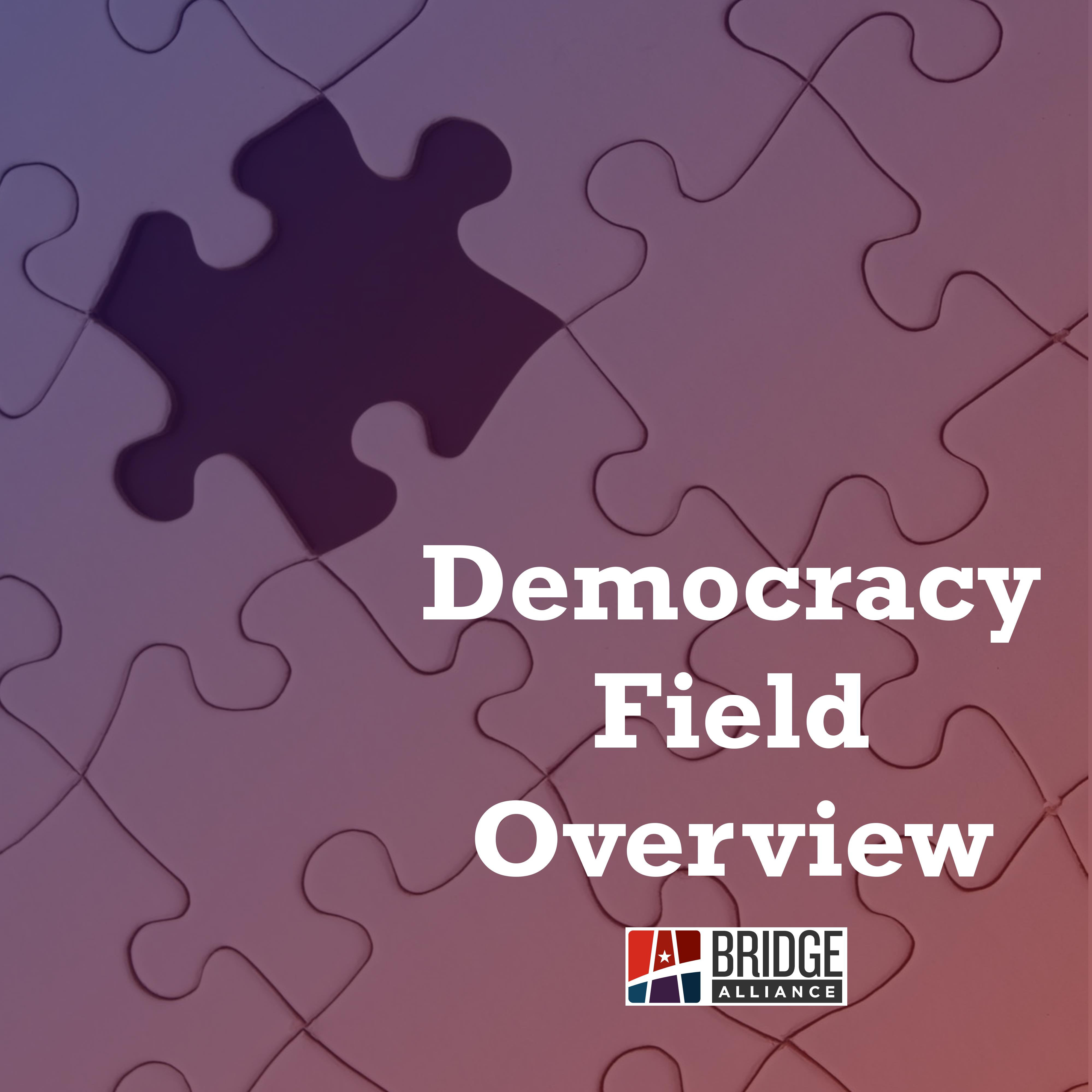 DemocracyOverviewGraphic.jpg