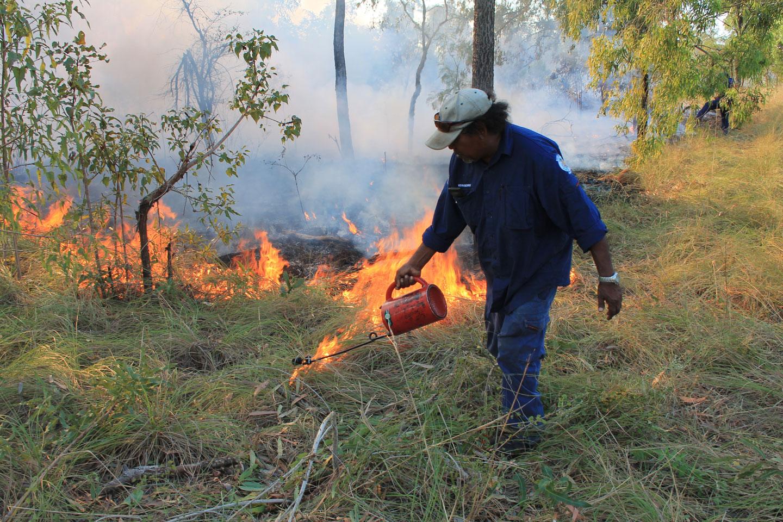 Bardi-Jawi-Rangers-firebreak.jpg