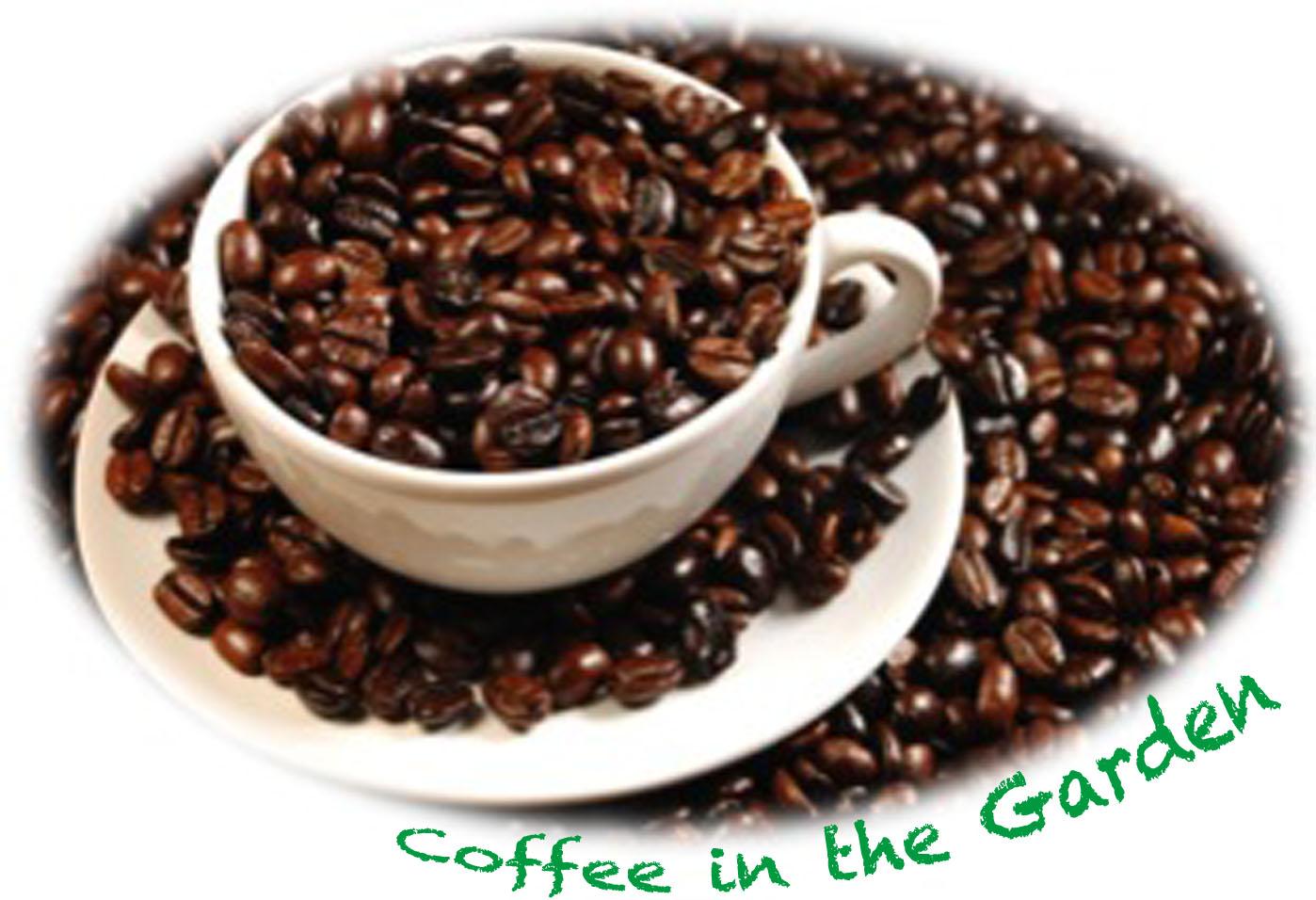 coffee_garden.jpg