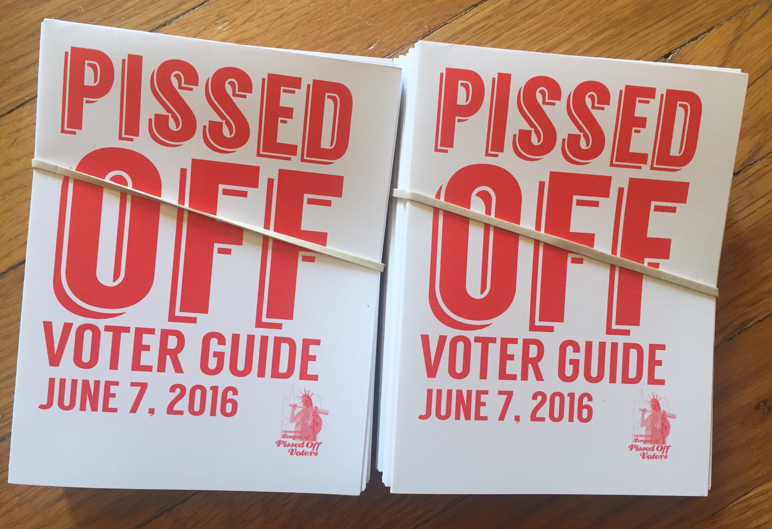 Pissed Off Voter Guide