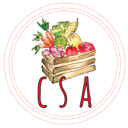 CSA_Icon.png