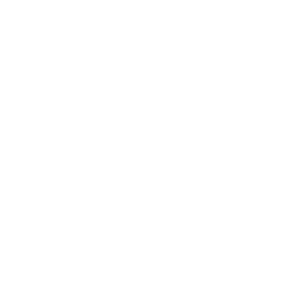 Y Foundations
