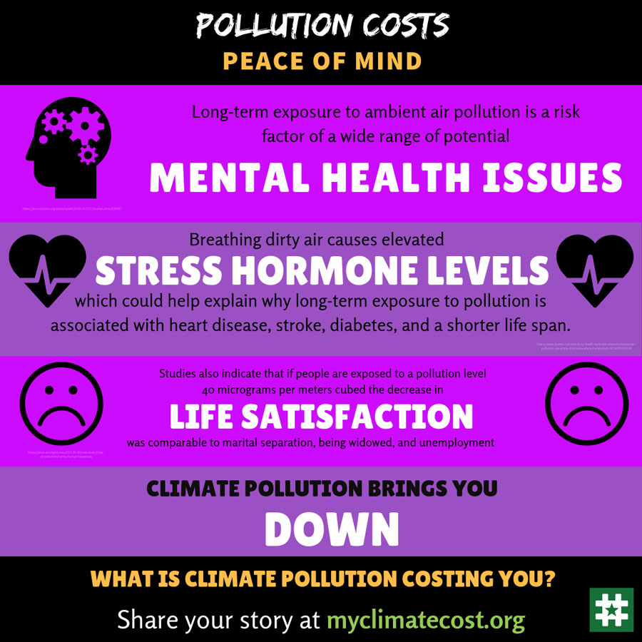 Pollution Costs Peace Of Mind