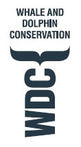 Whale and Dolphin Conservation Society