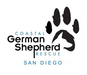 Coastal-German-Shepherd