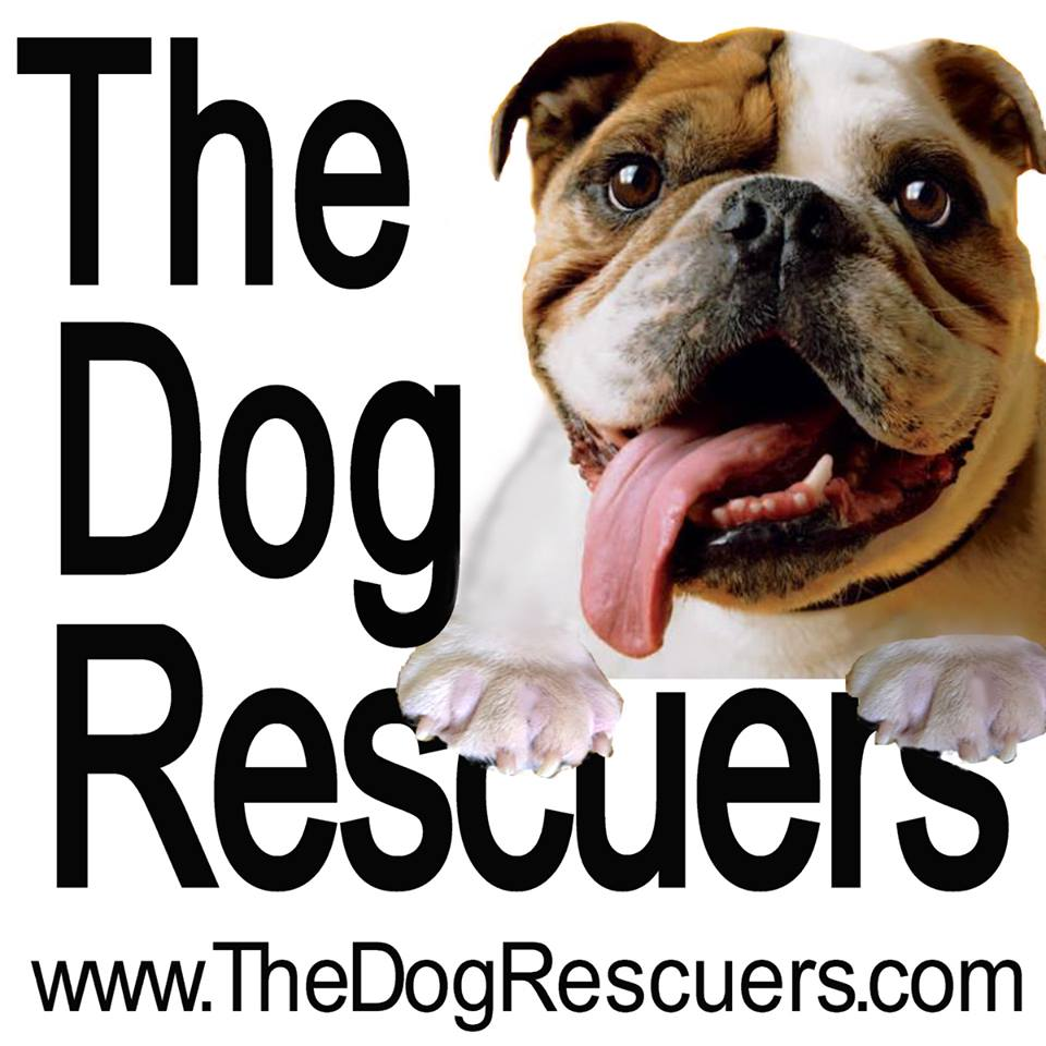 The-Dog-Rescuers