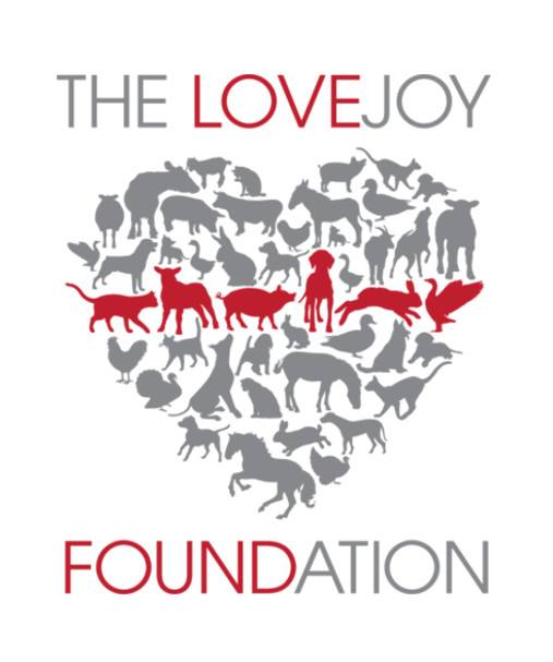 The-Love-Joy-Foundation