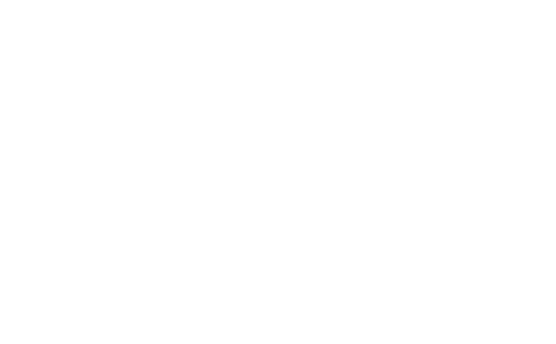 Gig Workers Rising