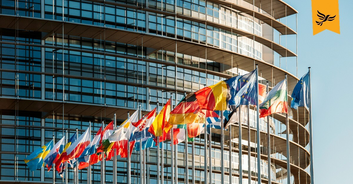 The flags of EU countries flying. Links to: Give EU Citizens a Vote in General Elections and Referendums