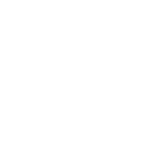 Jodi McKay - NSW Labor Leader