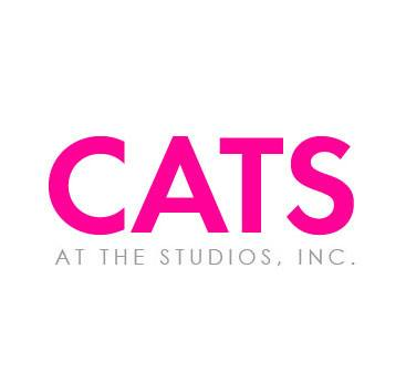 Cats-At-The-Studios