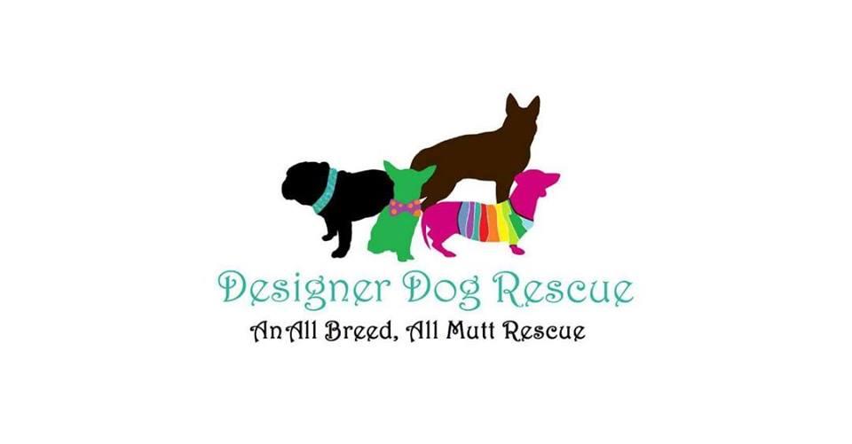 Designer-Dog-Rescue