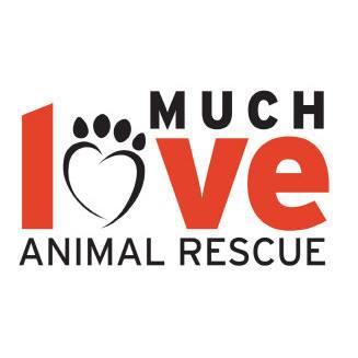 Much-Love