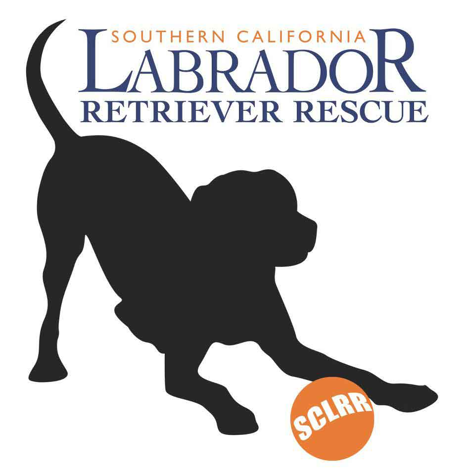 So-Cal-Lab-rescue