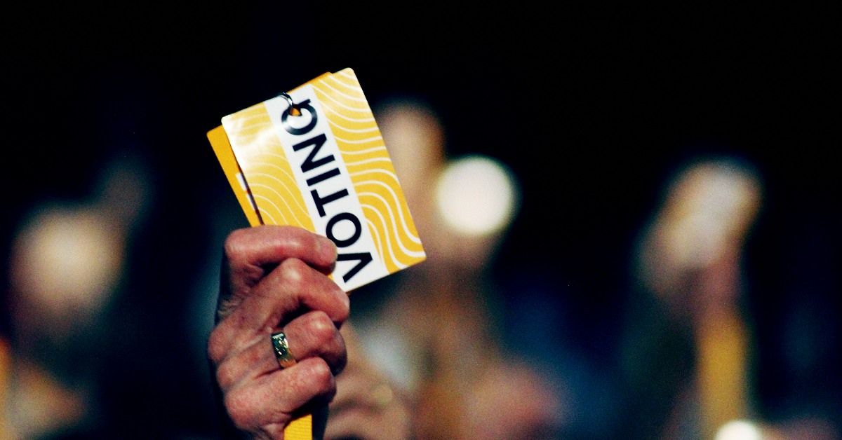 Voting card at Lib Dem conference. | Links to: July's Federal Conference Committee Report