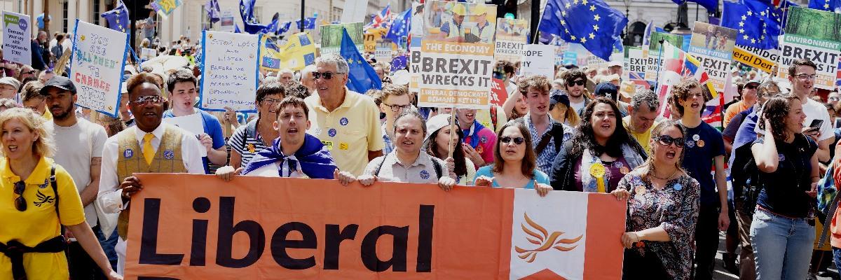 Liberal Democrats at 2018 Anti-Brexit March