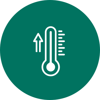 Strong Climate Action Icon